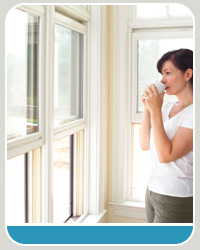 professional window treatment